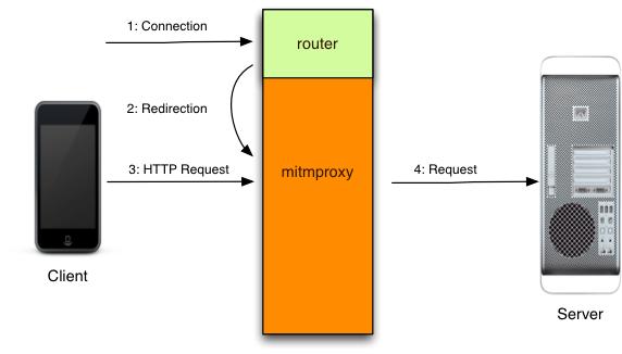 透明的HTTPS