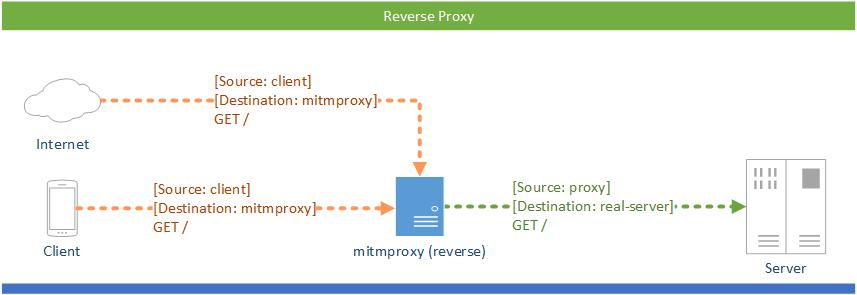 mitmproxy反向代理